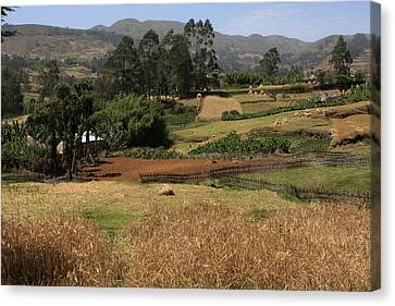 Guge Mountain Range Southern Ethiopia Canvas Print by Aidan Moran