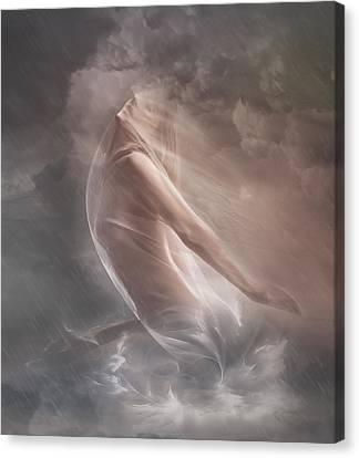 Rain Canvas Print - Guiding Light by Mary Hood