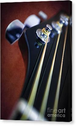 Guitar Head Stock Canvas Print