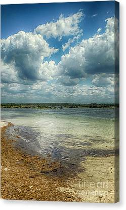 Gulf Beach Beauty Canvas Print by Judy Hall-Folde