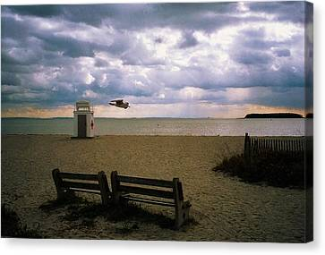 Canvas Print featuring the photograph Gulf Beach by John Scates