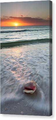 Canvas Print featuring the photograph Gulf Coast Sunset  by Patrick Downey