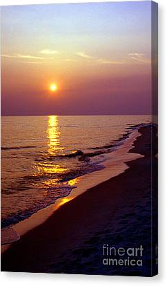 Gulf Of Mexico Sunset Canvas Print by Thomas R Fletcher