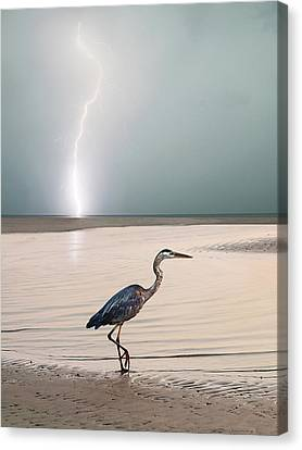 Gulf Port Storm Canvas Print