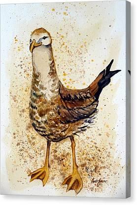 Gull-able Canvas Print