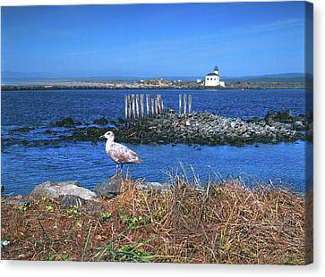 Gull And Lighthouse Canvas Print by Jim Nelson