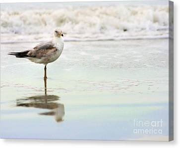 Beach Theme Decorating Canvas Print - Land Sea And Sky Series 4 by Angela Rath