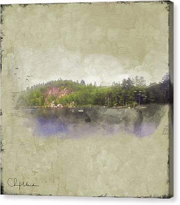 Gull Pond Canvas Print