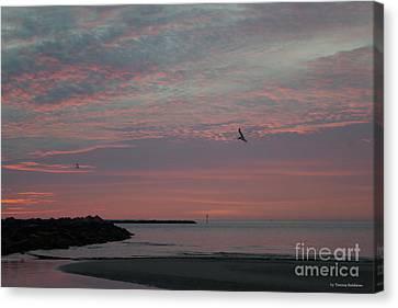Canvas Print - Gull Sunset by Tannis Baldwin