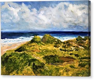 Gull's Eye View Canvas Print by Michael Helfen