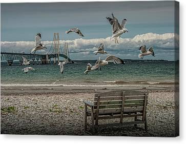 Gulls Flying By The Mackinac Bridge At The Straits With Park Bench Canvas Print by Randall Nyhof