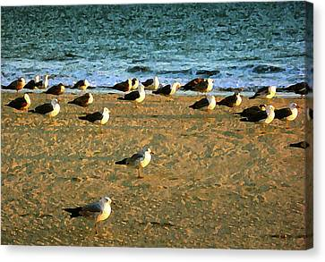 Canvas Print featuring the digital art Gulls by Timothy Bulone