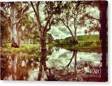 Canvas Print featuring the photograph Gum Creek V2 by Douglas Barnard