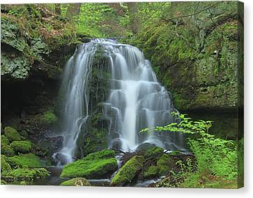 Gunn Brook Slip Dog Falls Mount Toby Canvas Print by John Burk