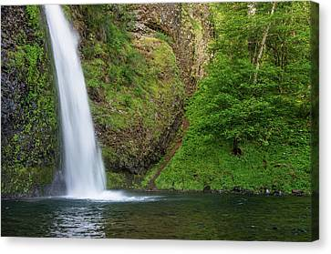 Canvas Print featuring the photograph Gushing Horsetail Falls by Greg Nyquist