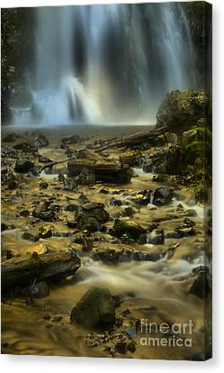 Falling Water Creek Canvas Print - Gushing Into The Creek by Adam Jewell