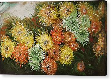 Gusty Chrysanthemums Canvas Print