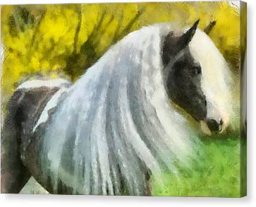 Canvas Print featuring the painting Gypsy by Elizabeth Coats