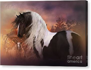 Gypsy On The Farm Canvas Print by Shanina Conway