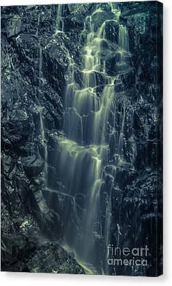 Hadlock Falls In Acadia National Park - Monochrome Canvas Print