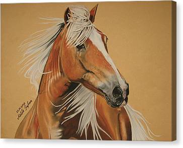 Canvas Print featuring the pastel Haflinger  by Melita Safran