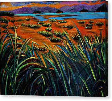 Haida Gwaii Sunrise Canvas Print by Faye Dietrich
