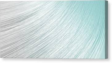 Hair Blowing Closeup Canvas Print by Allan Swart