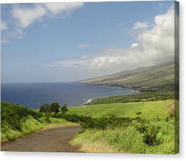Haleakala's Dry Slope, East Maui Canvas Print by Feva Fotos
