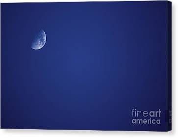 Half Blue Moon Canvas Print