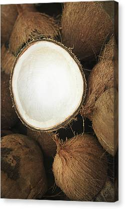 Half Coconut Canvas Print by Brandon Tabiolo - Printscapes