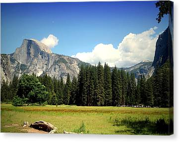 Half Dome Yosemite From The Meadow Canvas Print