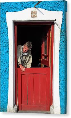 Half Door Canvas Print by Aidan Moran