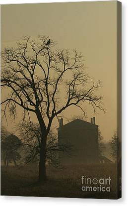 Halfway House And Eagle Canvas Print