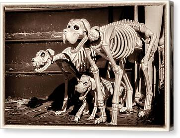 Halloween Hounds Of Hell Canvas Print