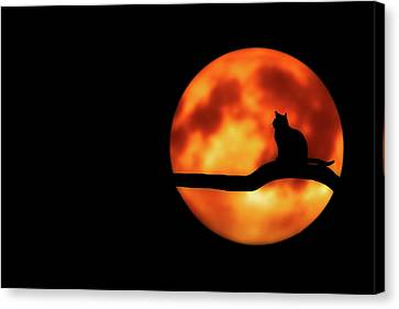 Halloween Night Canvas Print by Bess Hamiti