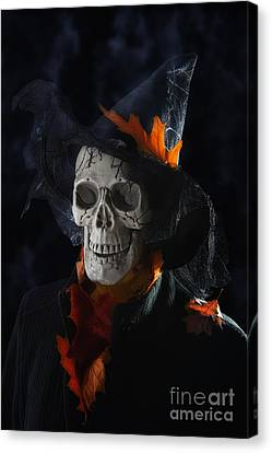 Halloween Skull Canvas Print by Amanda Elwell