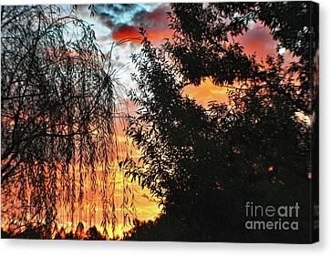 Halloween Sunrise 2015 Canvas Print