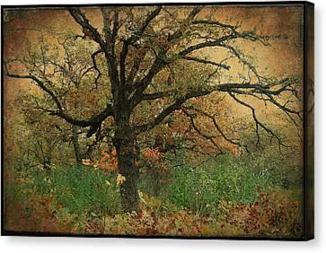 Halloween Tree 2 Canvas Print by Scott Kingery
