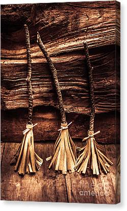 Unusual Canvas Print - Halloween Witch Brooms by Jorgo Photography - Wall Art Gallery