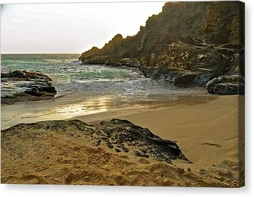 Halona Beach Cove Canvas Print by Michael Peychich
