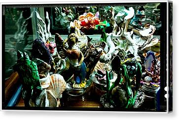 Hama Hama Trigger Checking Things Out Canvas Print by Kirk Wieland