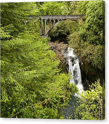 Hamakua Bridge Canvas Print by Charlie Osborn