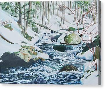 Hamburg Mountain Stream Canvas Print by Constance Drescher