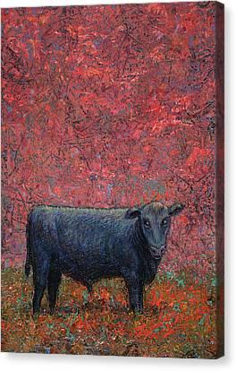Bovine Canvas Print - Hamburger Sky by James W Johnson
