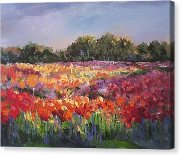 Hamilton Dahlia Farm Canvas Print