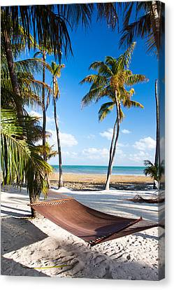 Hammock In Paradise Canvas Print by Adam Pender
