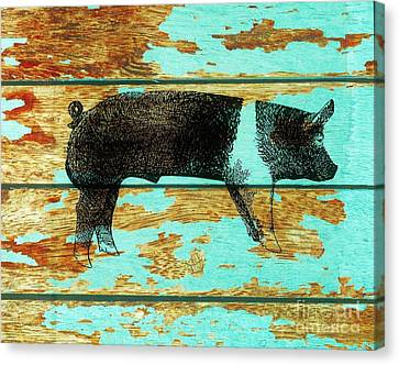 Hampshire Boar 1 Canvas Print by Larry Campbell