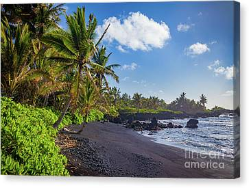 Hana Bay Palms Canvas Print