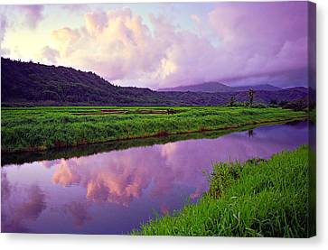 Hanalei Dawn Canvas Print by Kevin Smith