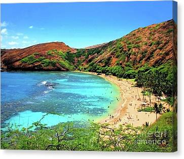 Hanauma Bay Nature Preserve Canvas Print by Kristine Merc